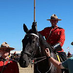 RCMP Mountie and horse